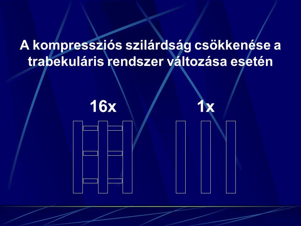 A kompressziós szilárdság csökkenése a trabekuláris rendszer változása esetén