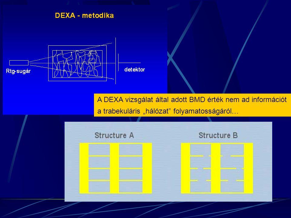 A DEXA vizsgálat által adott BMD érték nem ad információt