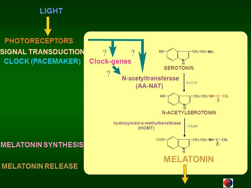 MELATONIN LIGHT PHOTORECEPTORS SIGNAL TRANSDUCTION
