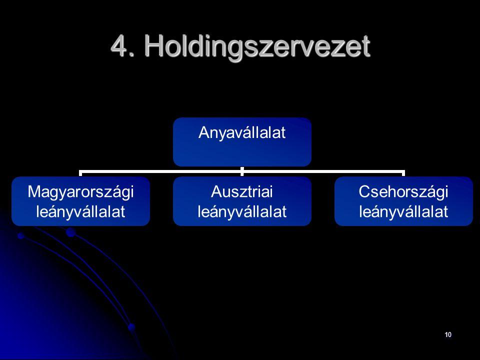 4. Holdingszervezet