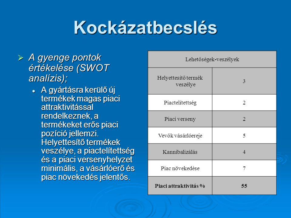 Kockázatbecslés A gyenge pontok értékelése (SWOT analízis);