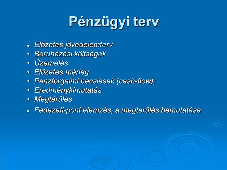 Pénzügyi terv Előzetes jövedelemterv Beruházási költségek Üzemelés