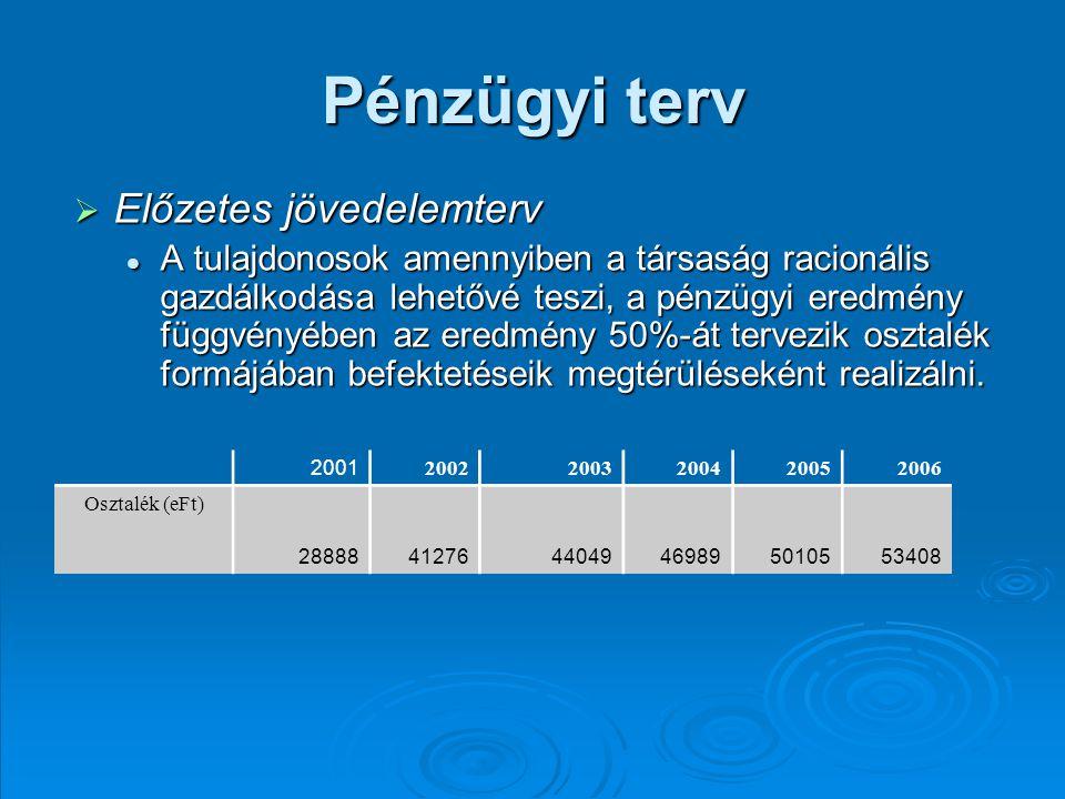 Pénzügyi terv Előzetes jövedelemterv