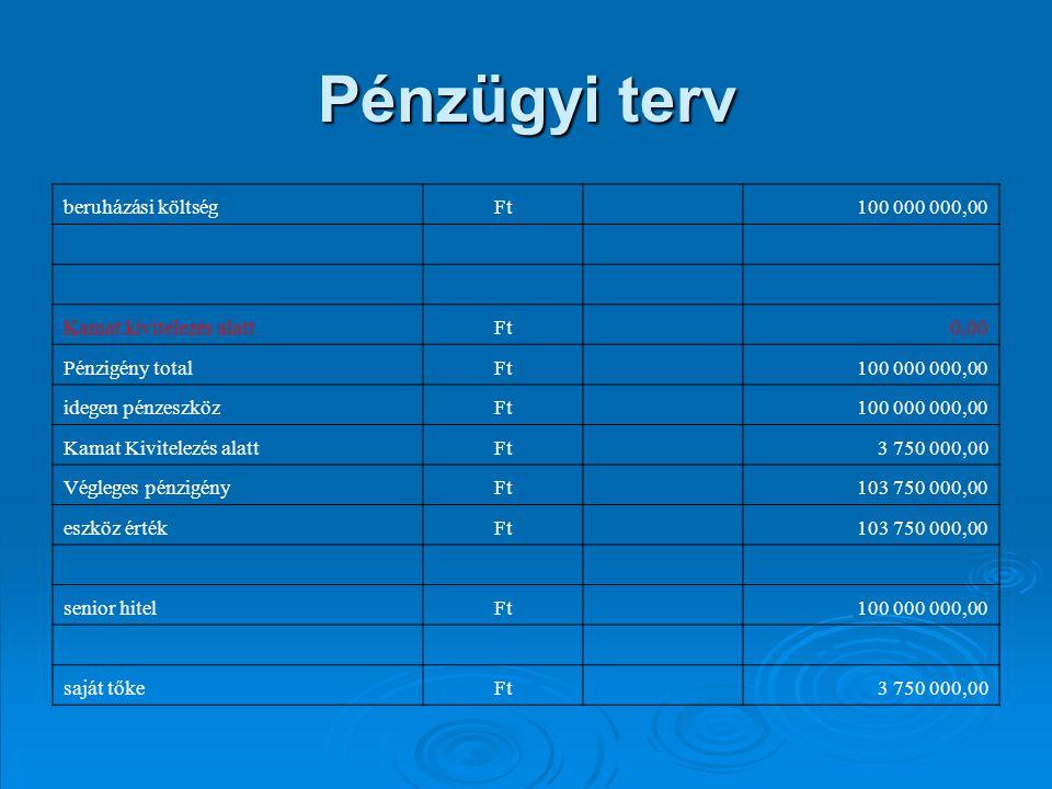 Pénzügyi terv beruházási költség Ft 100 000 000,00