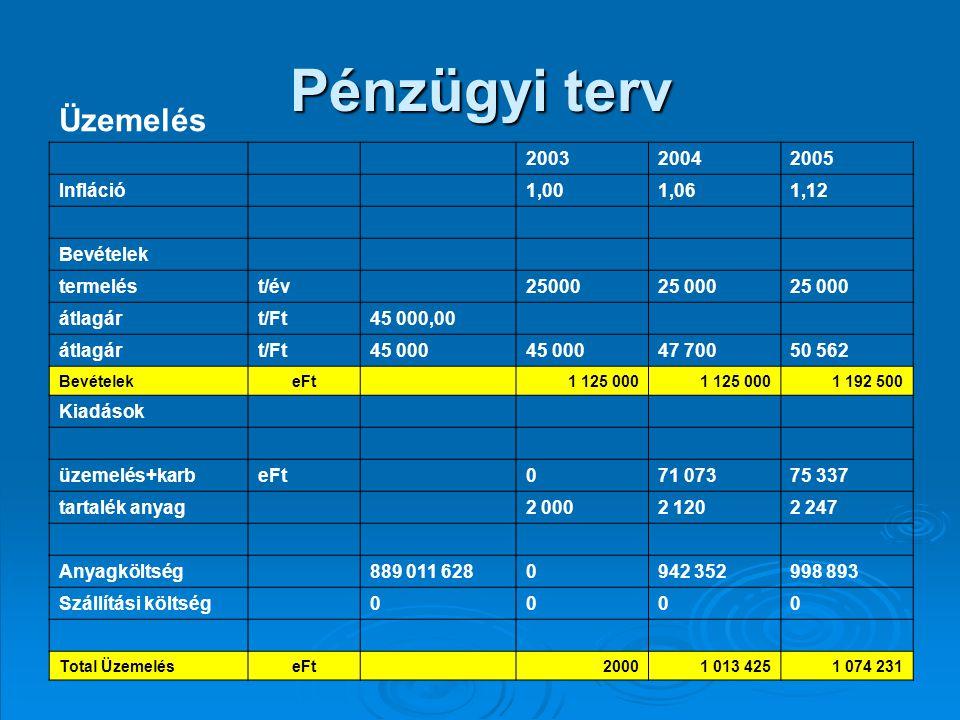 Pénzügyi terv Üzemelés 2003 2004 2005 Infláció 1,00 1,06 1,12