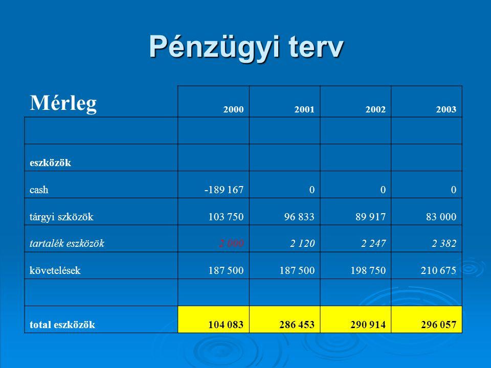 Pénzügyi terv Mérleg eszközök cash -189 167 tárgyi szközök 103 750