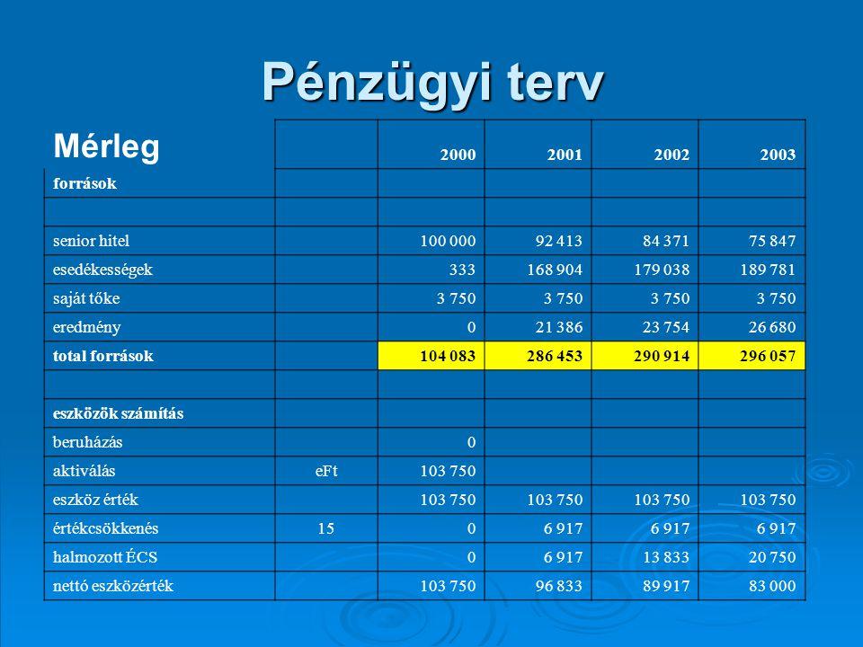 Pénzügyi terv Mérleg 2000 2001 2002 2003 források senior hitel 100 000