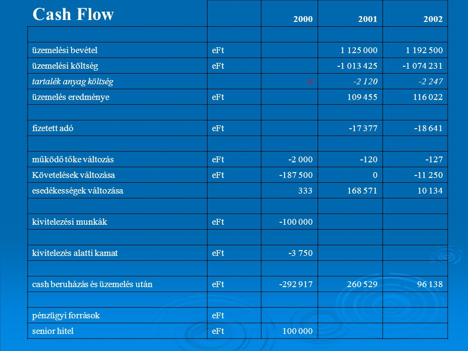 Cash Flow 2000 2001 2002 üzemelési bevétel eFt 1 125 000 1 192 500
