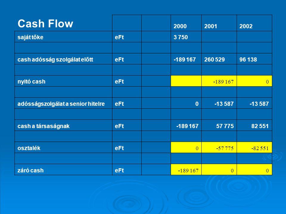 Cash Flow 2000 2001 2002 saját tőke eFt 3 750