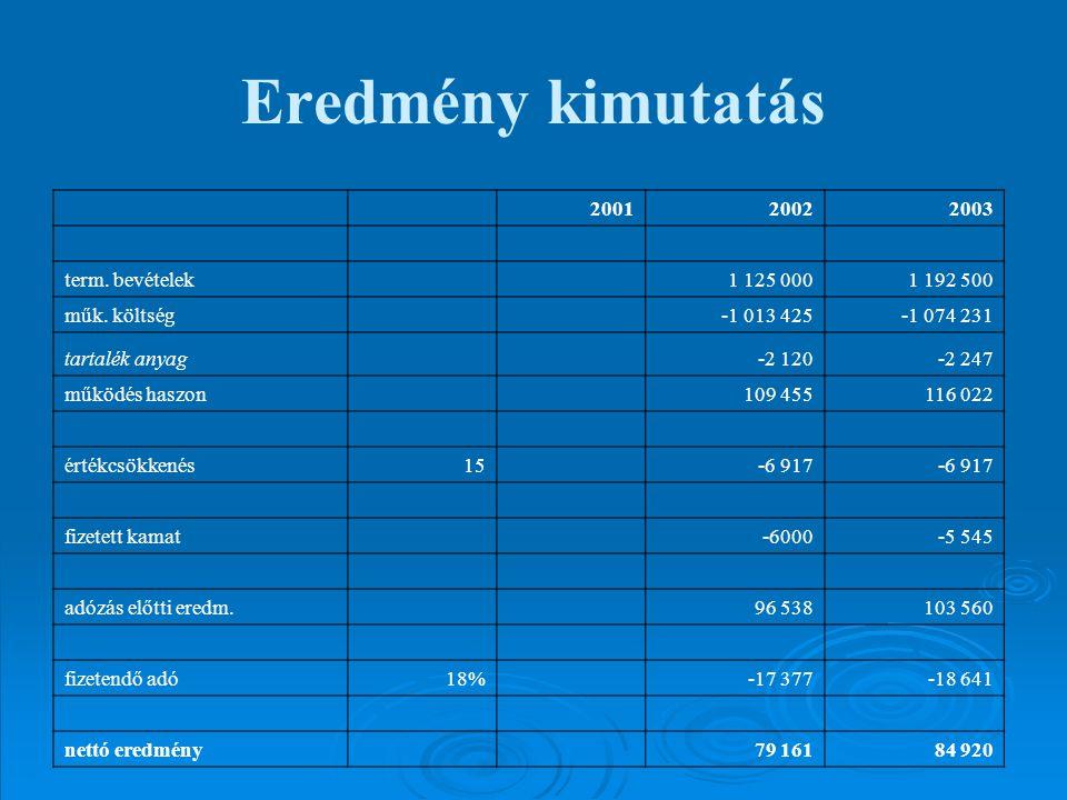 Eredmény kimutatás 2001 2002 2003 term. bevételek 1 125 000 1 192 500