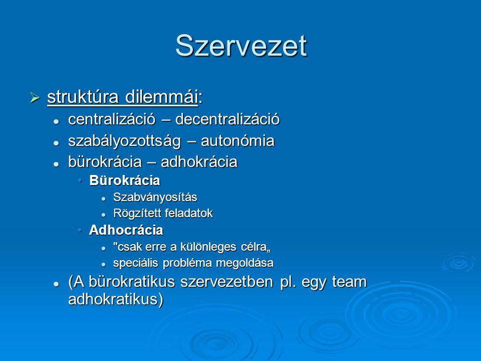 Szervezet struktúra dilemmái: centralizáció – decentralizáció