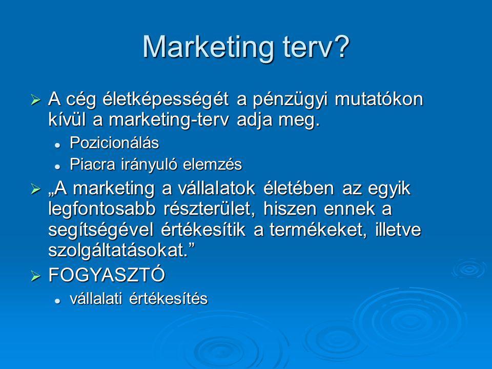 Marketing terv A cég életképességét a pénzügyi mutatókon kívül a marketing-terv adja meg. Pozicionálás.