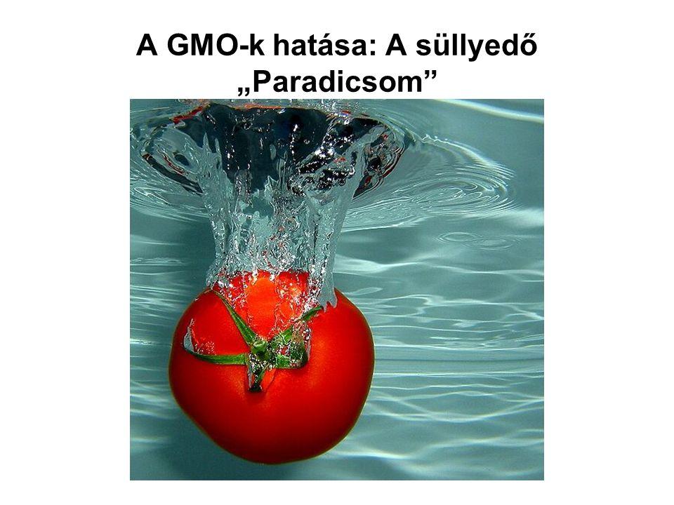"""A GMO-k hatása: A süllyedő """"Paradicsom"""
