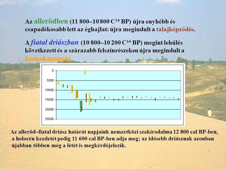Az allerödben (11 800–10 800 C14 BP) újra enyhébb és csapadékosabb lett az éghajlat: újra megindult a talajképződés.