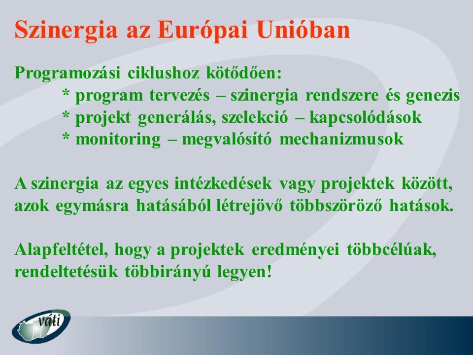 Szinergia az Európai Unióban