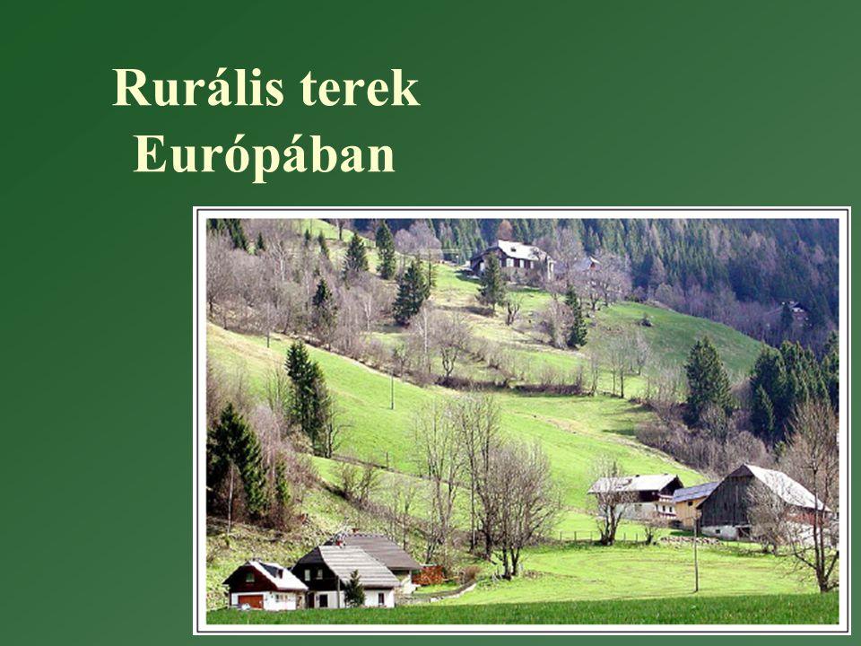 Rurális terek Európában