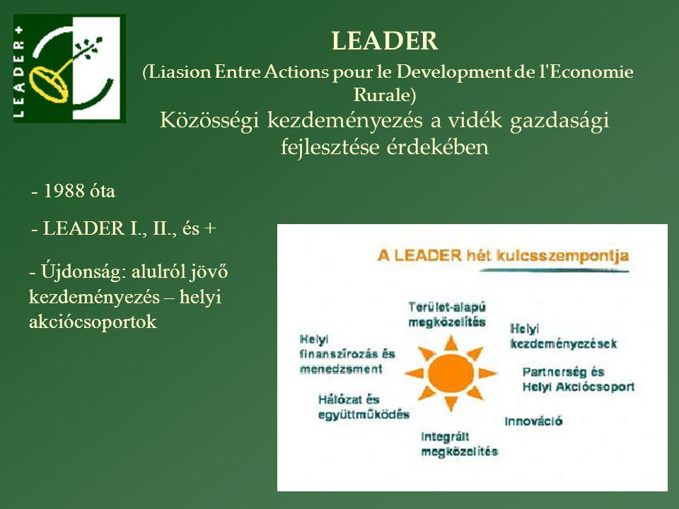 LEADER (Liasion Entre Actions pour le Development de l Economie Rurale) Közösségi kezdeményezés a vidék gazdasági fejlesztése érdekében