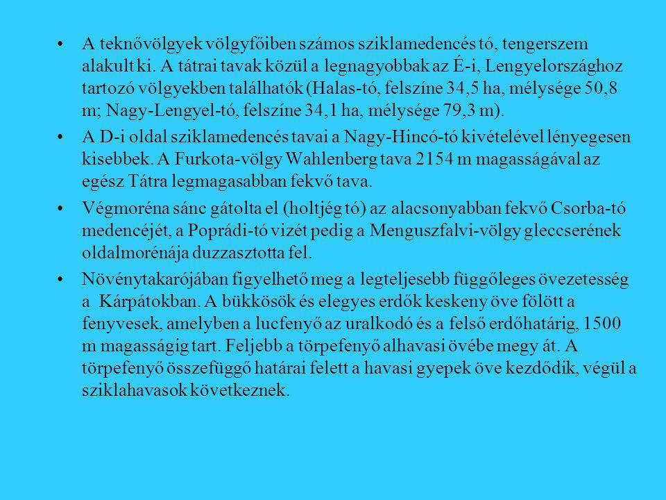 A teknővölgyek völgyfőiben számos sziklamedencés tó, tengerszem alakult ki. A tátrai tavak közül a legnagyobbak az É-i, Lengyelországhoz tartozó völgyekben találhatók (Halas-tó, felszíne 34,5 ha, mélysége 50,8 m; Nagy-Lengyel-tó, felszíne 34,1 ha, mélysége 79,3 m).
