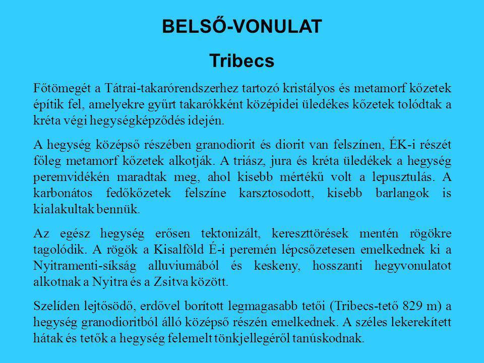 BELSŐ-VONULAT Tribecs