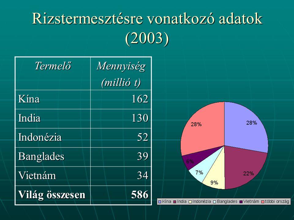 Rizstermesztésre vonatkozó adatok (2003)