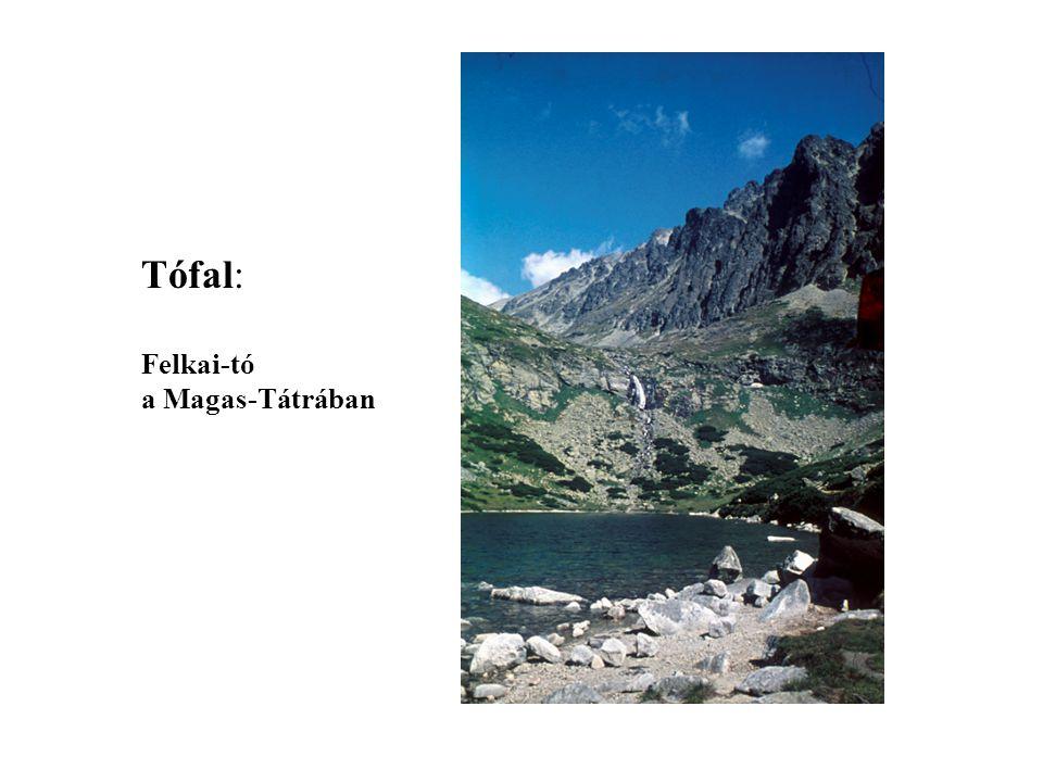 Tófal: Felkai-tó a Magas-Tátrában