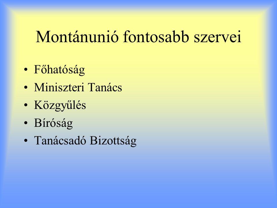 Montánunió fontosabb szervei