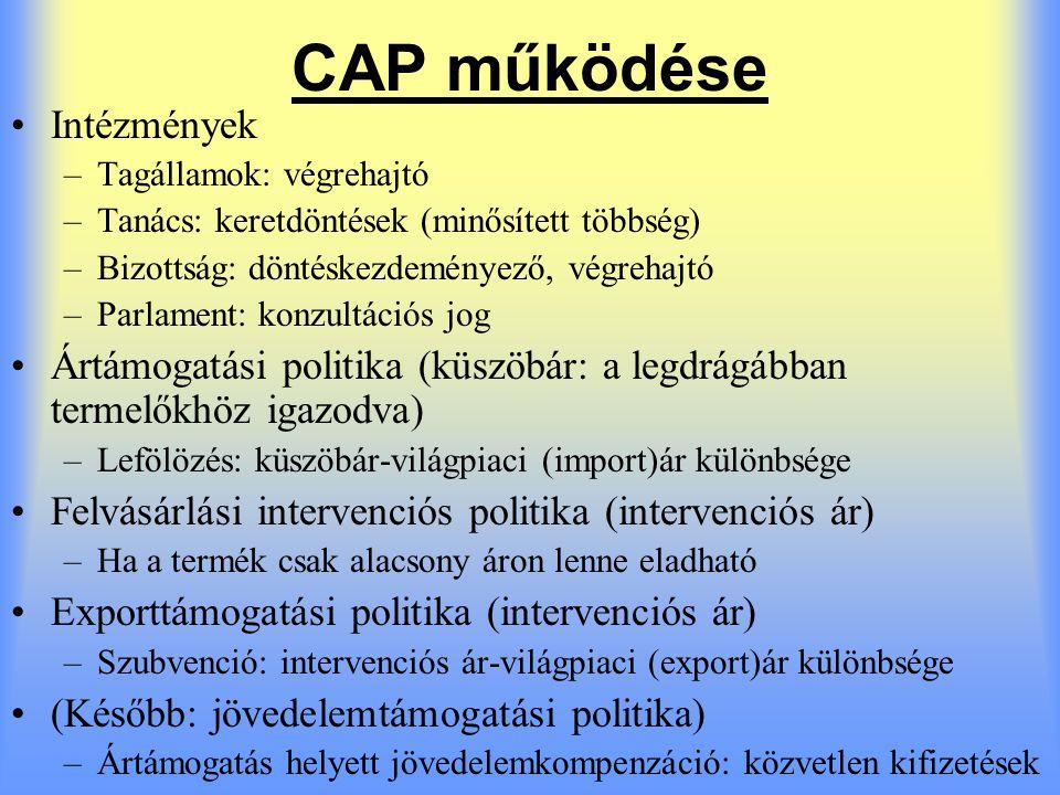 CAP működése Intézmények