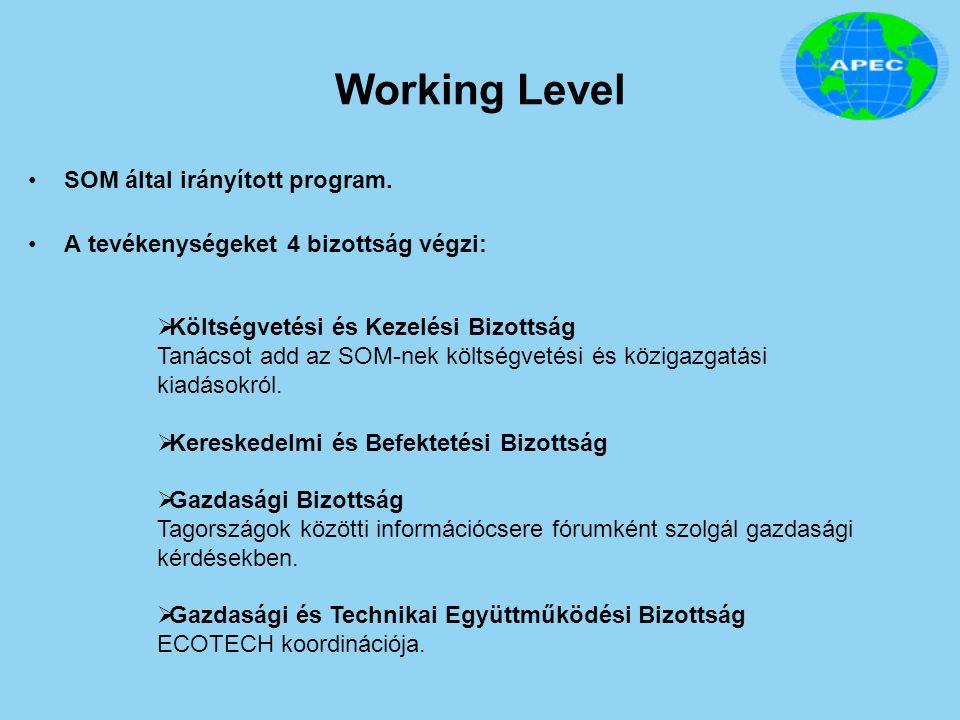 Working Level SOM által irányított program.