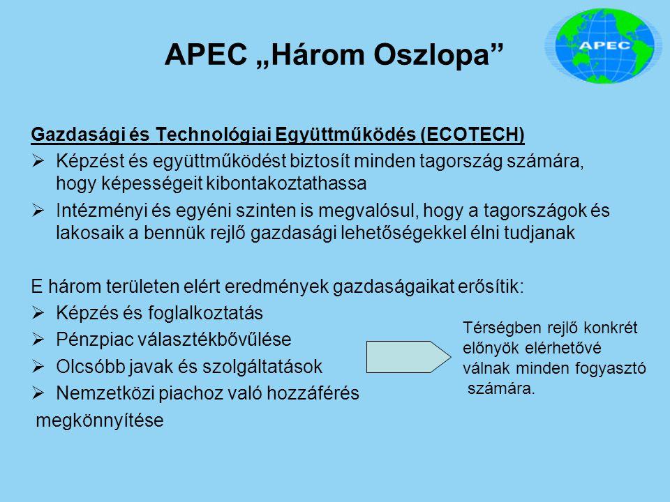 """APEC """"Három Oszlopa Gazdasági és Technológiai Együttműködés (ECOTECH)"""