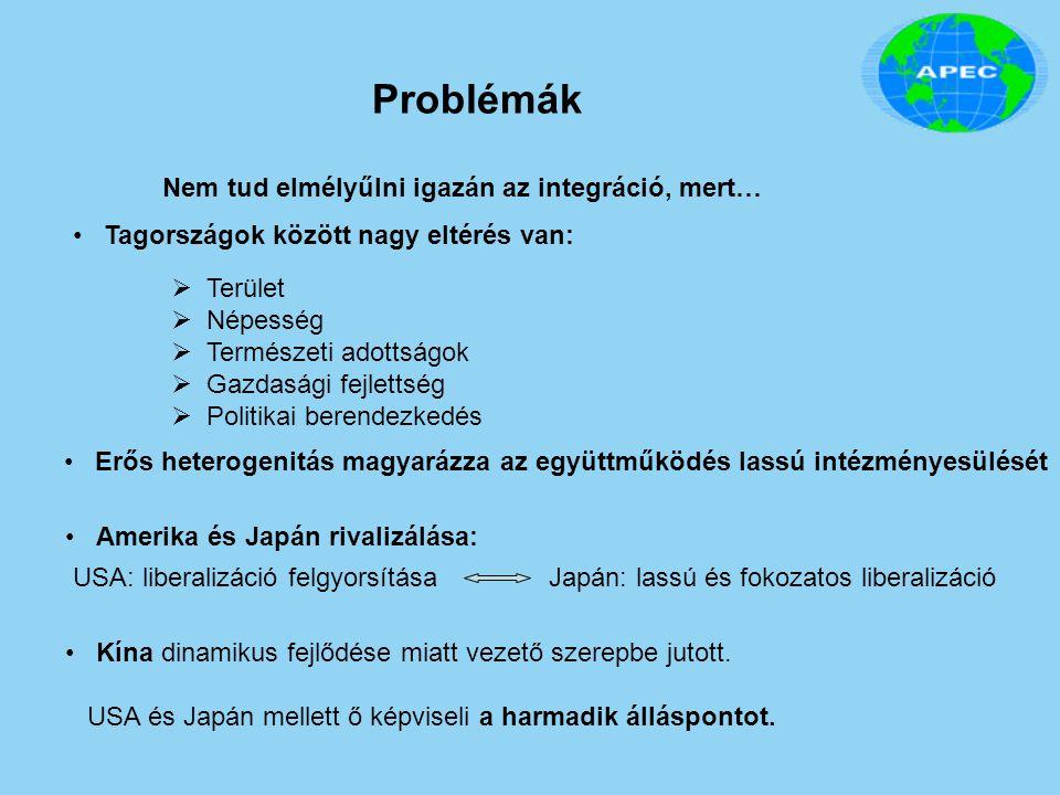 Problémák Nem tud elmélyűlni igazán az integráció, mert…