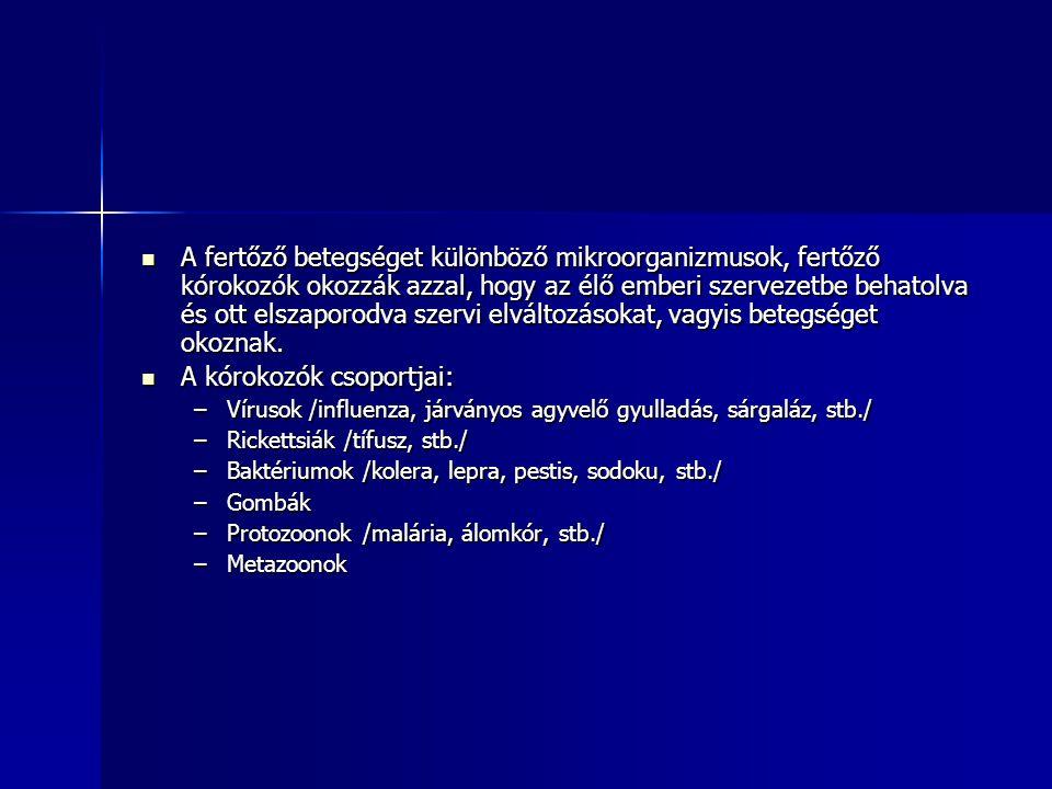 A kórokozók csoportjai: