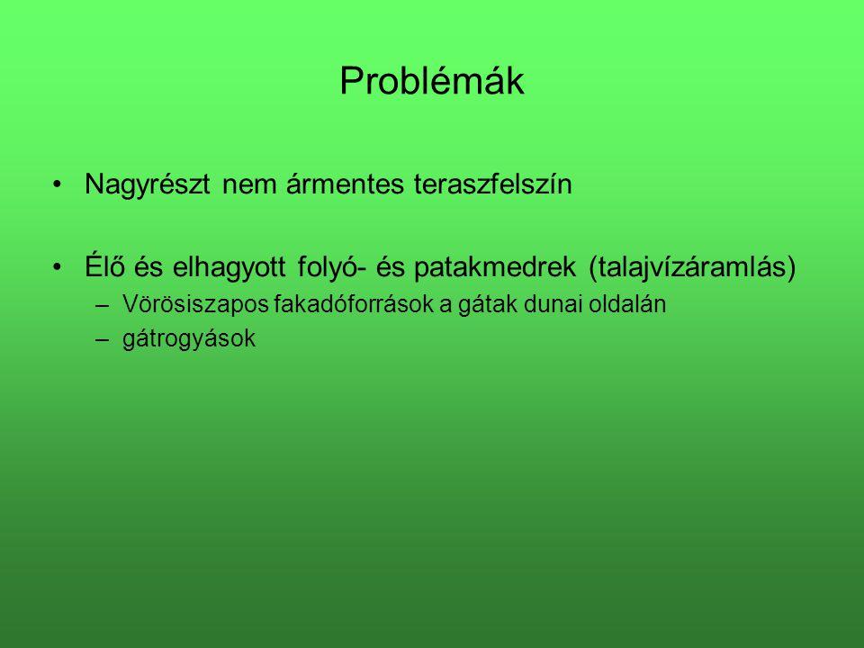 Problémák Nagyrészt nem ármentes teraszfelszín