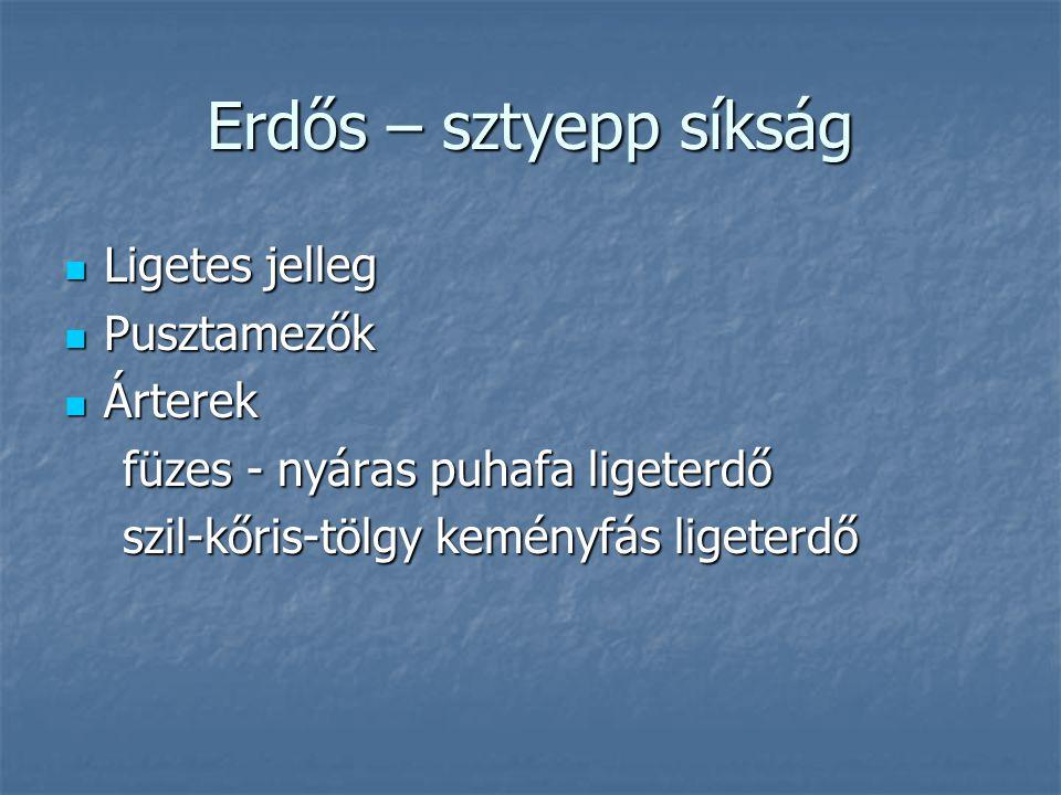 Erdős – sztyepp síkság Ligetes jelleg Pusztamezők Árterek