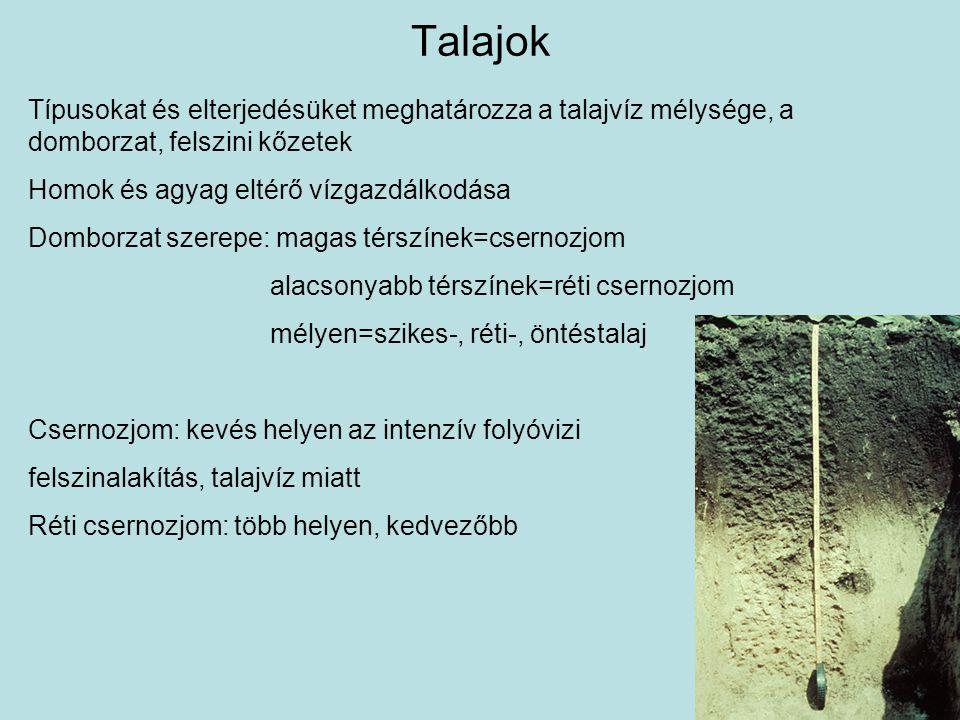 Talajok Típusokat és elterjedésüket meghatározza a talajvíz mélysége, a domborzat, felszini kőzetek.