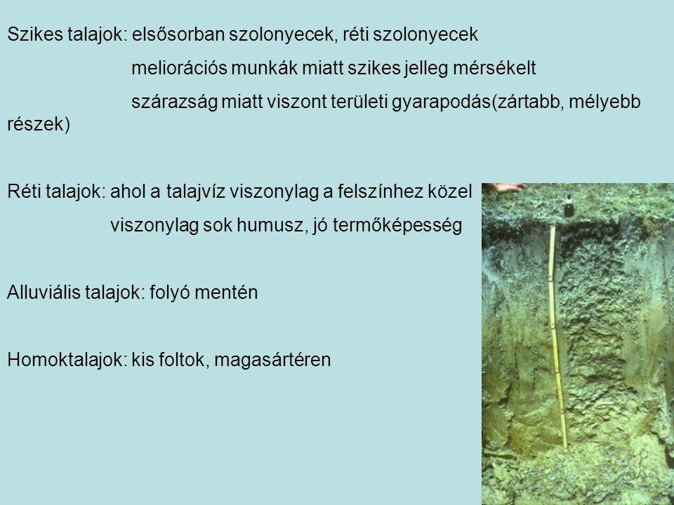 Szikes talajok: elsősorban szolonyecek, réti szolonyecek