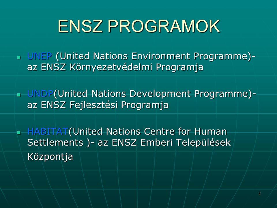 ENSZ PROGRAMOK UNEP (United Nations Environment Programme)- az ENSZ Környezetvédelmi Programja.
