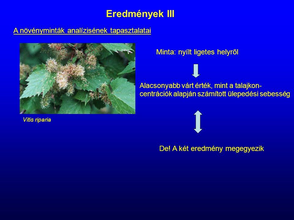 Eredmények III A növényminták analízisének tapasztalatai