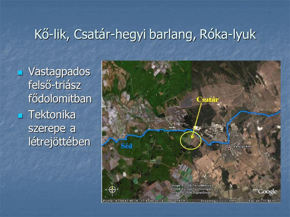 Kő-lik, Csatár-hegyi barlang, Róka-lyuk