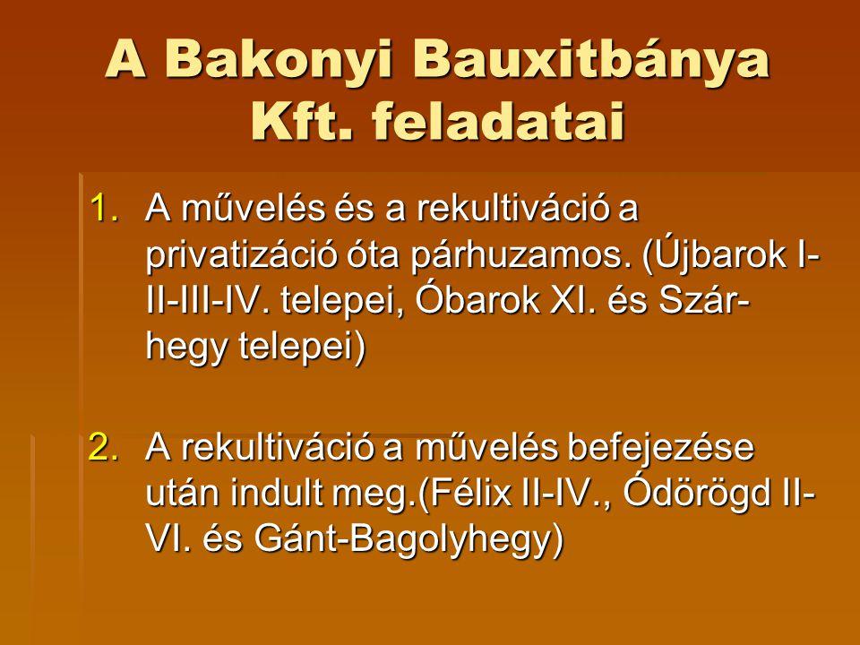 A Bakonyi Bauxitbánya Kft. feladatai