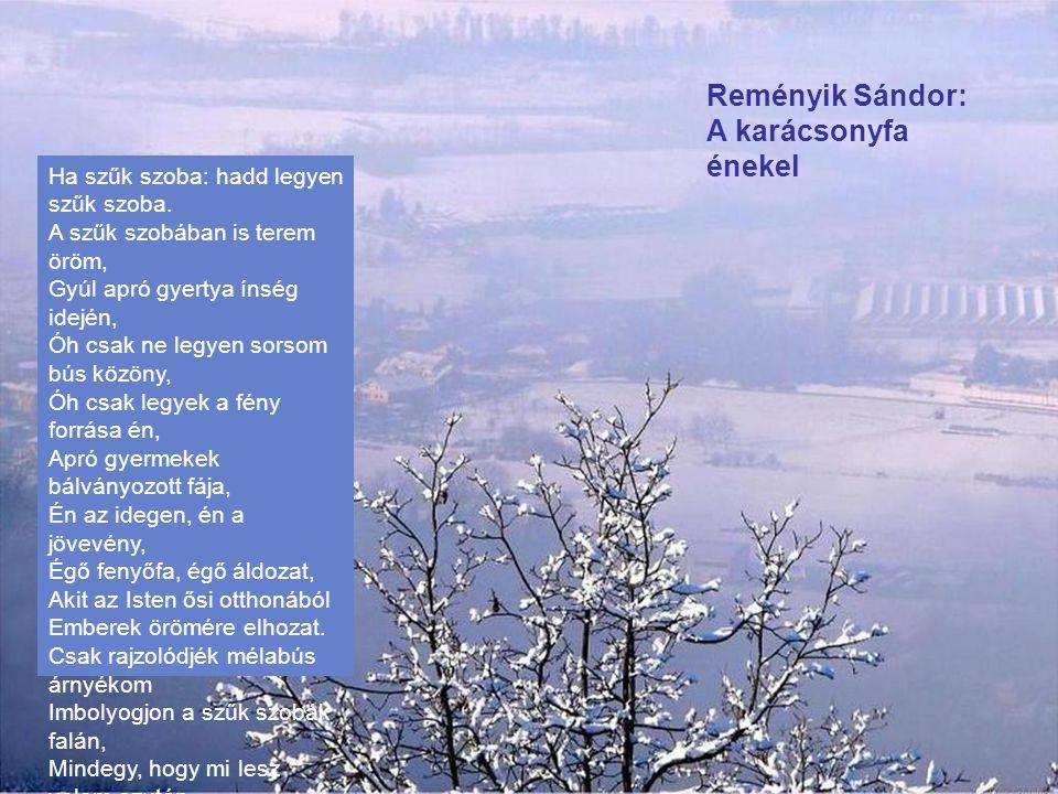 Reményik Sándor: A karácsonyfa énekel