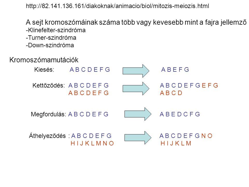 A sejt kromoszómáinak száma több vagy kevesebb mint a fajra jellemző