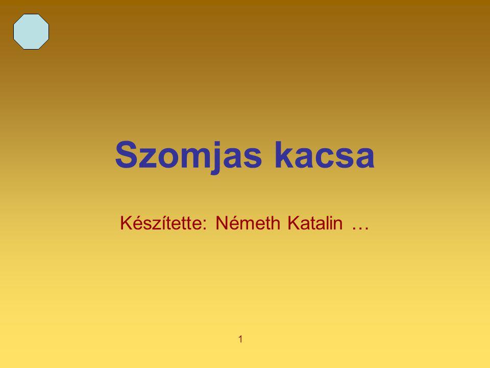 Készítette: Németh Katalin …