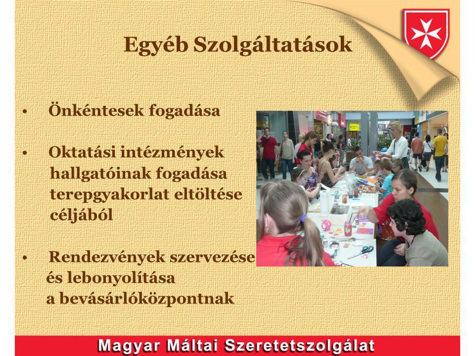 Egyéb Szolgáltatások Önkéntesek fogadása Oktatási intézmények