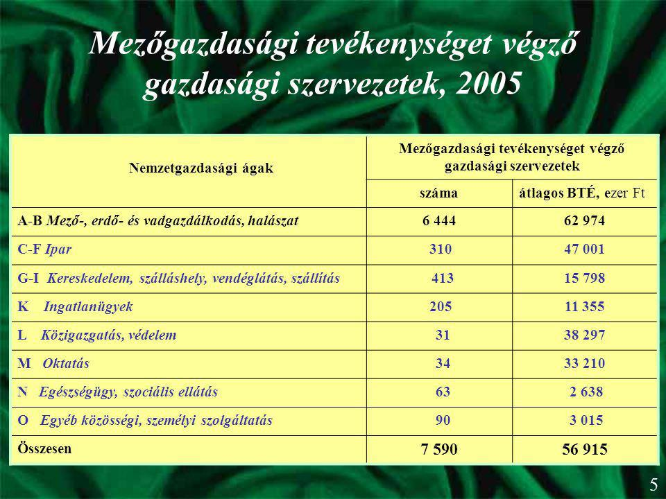 Mezőgazdasági tevékenységet végző gazdasági szervezetek, 2005