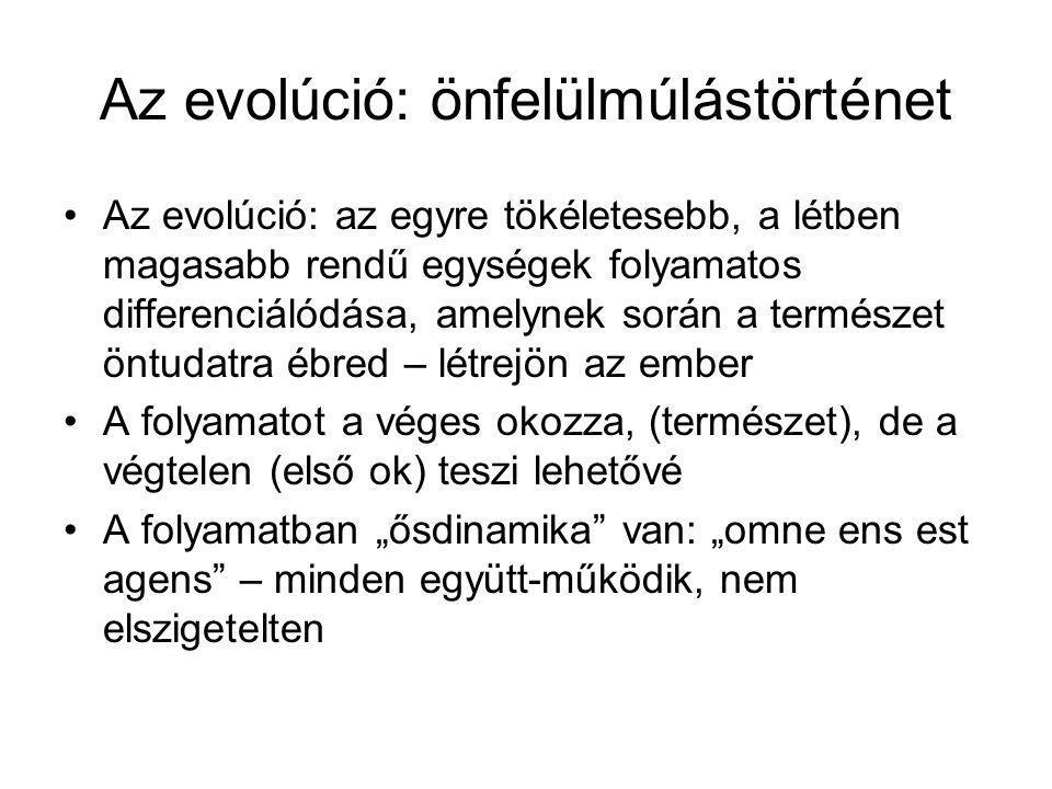 Az evolúció: önfelülmúlástörténet