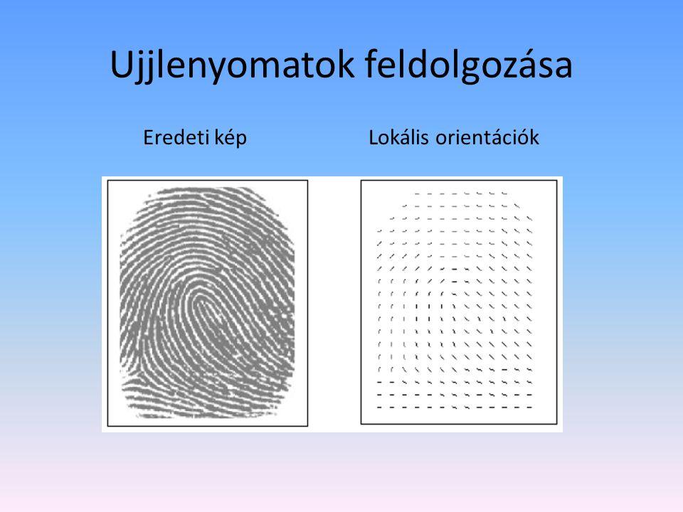 Ujjlenyomatok feldolgozása