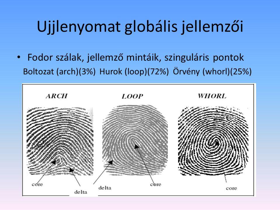 Ujjlenyomat globális jellemzői