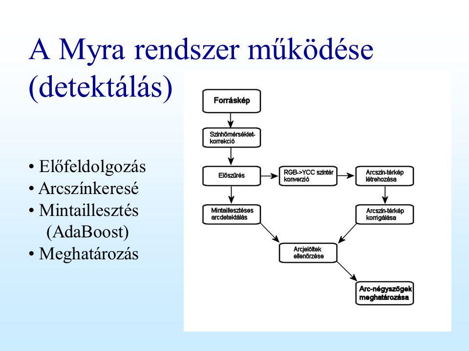 A Myra rendszer működése (detektálás)