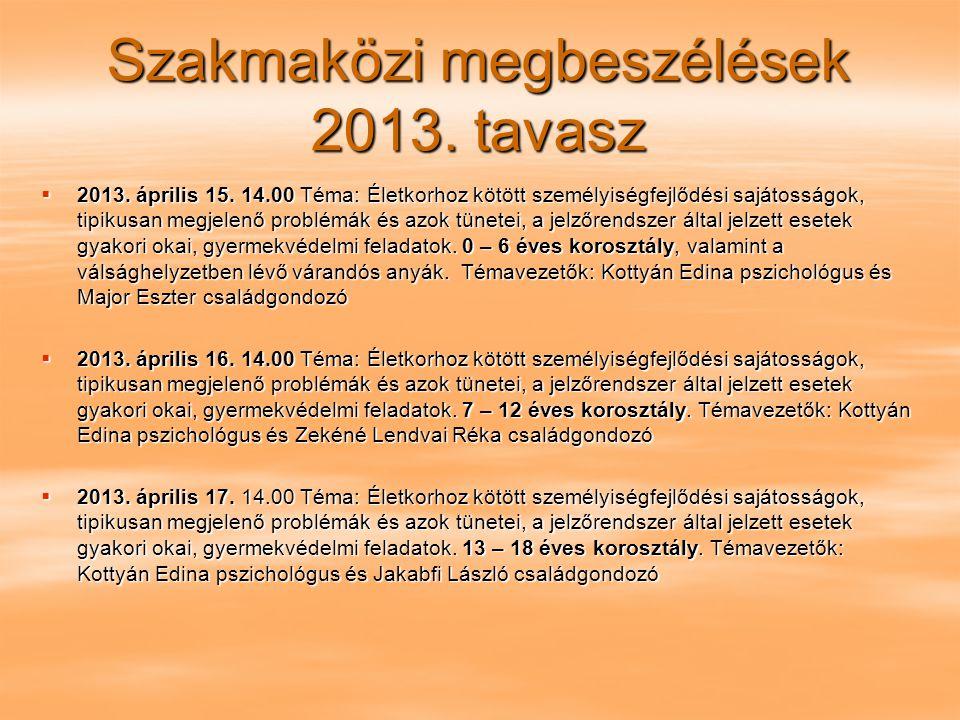 Szakmaközi megbeszélések 2013. tavasz