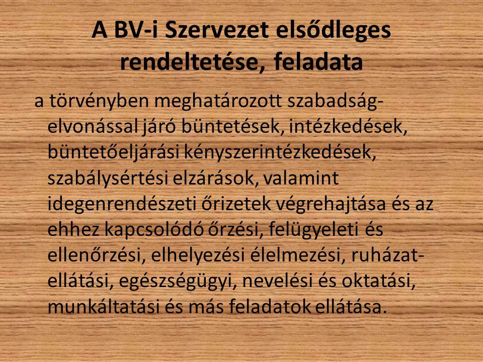 A BV-i Szervezet elsődleges rendeltetése, feladata